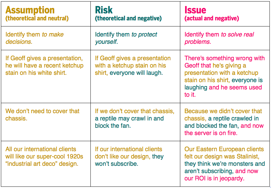 Assumptions, Risks and Issues
